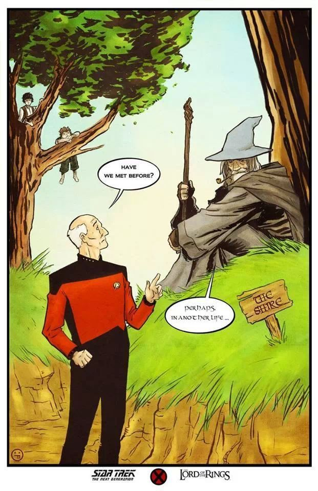 Captain Picard and Gandalf mashup