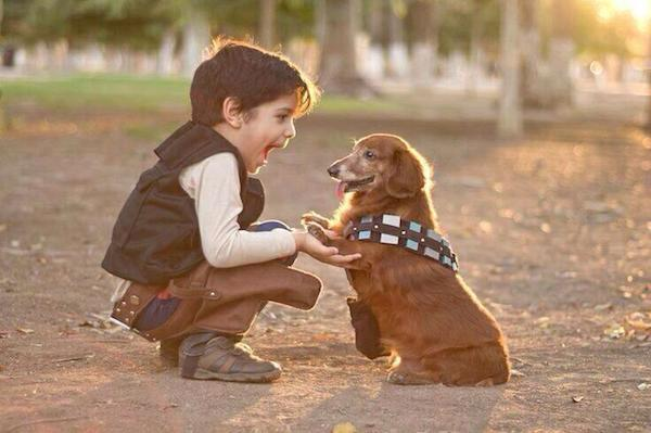 han-and-chewie-adorable cosplay
