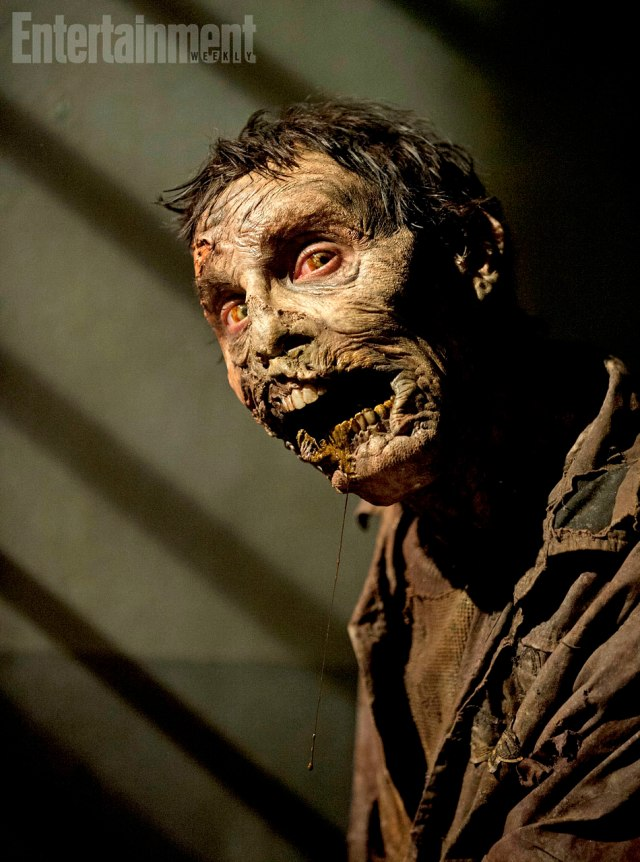 Walker - (Photo by Gene Page/AMC)