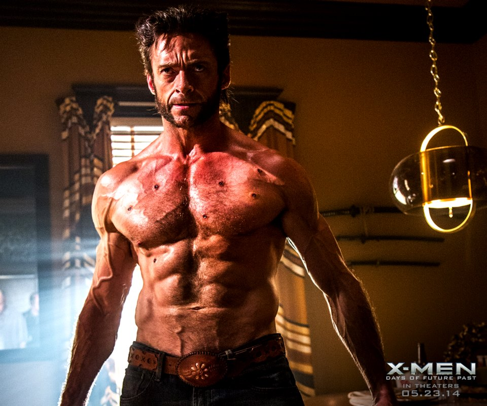 1000+ images about WOLVERINE on Pinterest | Wolverines