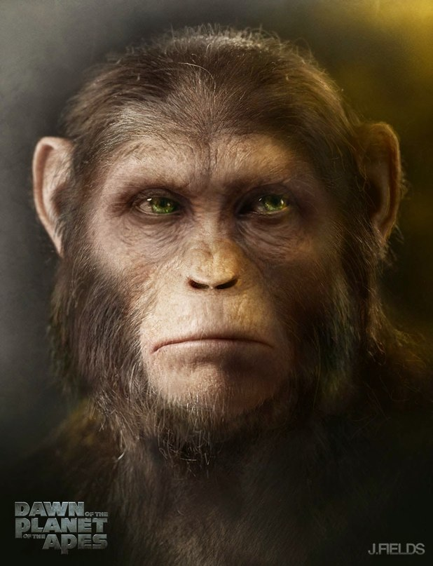 Dawn of the Planet of the Apes_Concept Art by Justin Goby Fields3