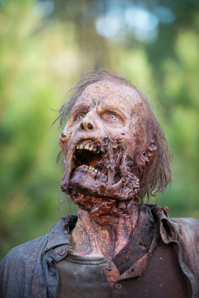 Walker - The Walking Dead _ Season 5, Episode 16  - Photo Credit: Gene Page/AMC