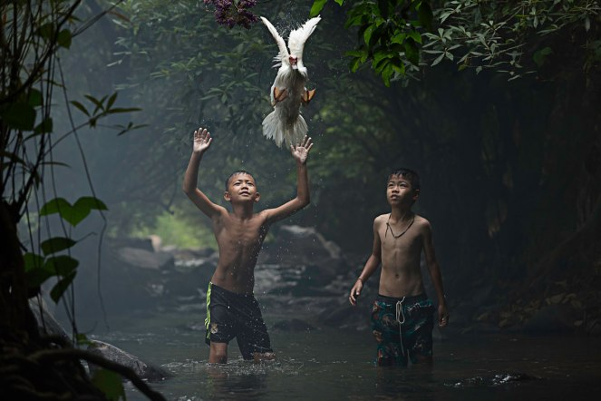 Merit_Catching a Duck