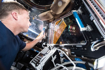 (December 2, 2014) --- Flight engineer Terry Virts captures his reflection and an orbital sunrise in the Cupola windows.