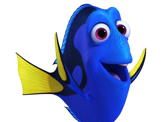 DORY (voice of Ellen DeGeneres) is a bright blue tang with a sunny personality. She suffers from short-term memory loss, which normally doesn't upset her upbeat attitude—until she realizes she's forgotten something big: her family. She's found a new family in Marlin and Nemo, but she's haunted by the belief that someone out there is looking for her. Dory may have trouble recalling exactly what—or who—she's searching for, but she won't give up until she uncovers her past and discovers something else along the way: self-acceptance.