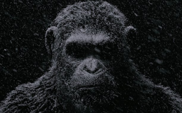 war-for-the-planet-of-the-apes_still